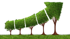 GROW FROM SMALL TO LARGE IN EIGHT SIMPLE STEPS